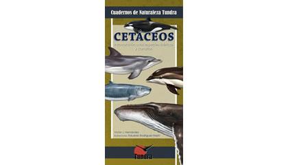 Cetáceos. Introducción a las especies ibéricas y canarias