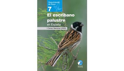 El escribano palustre en España