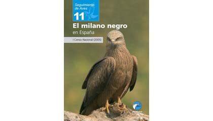 El milano negro en España
