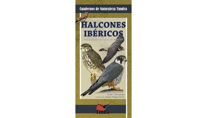 Halcones ibéricos. Introducción a todas las especies
