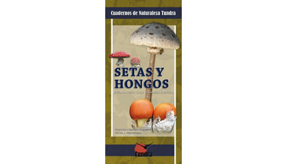 Setas y hongos. Introducción a las especies ibéricas